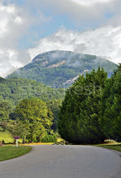 Stock photo: Road to Yonah Mountain