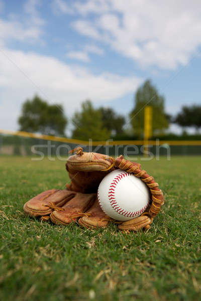 Baseball and Glove in the Outfield Stock photo © 33ft