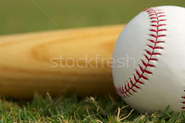 野球 バット 草 ルーム コピー ストックフォト © 33ft