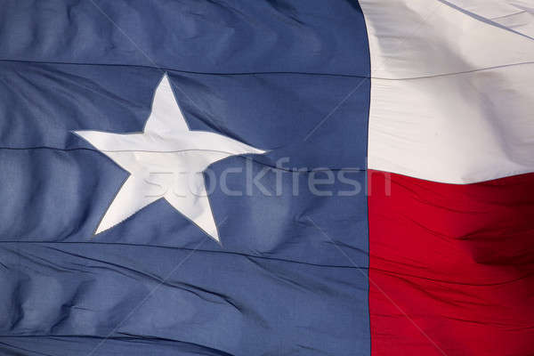 Flag of the State of Texas Stock photo © 33ft
