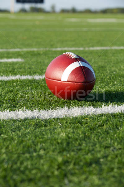 American Football along the Yard Lines Stock photo © 33ft