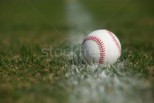 Baseball in the Outfield Grass Stock photo © 33ft