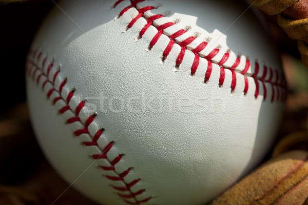 野球 ボール 陸上 ストックフォト © 33ft