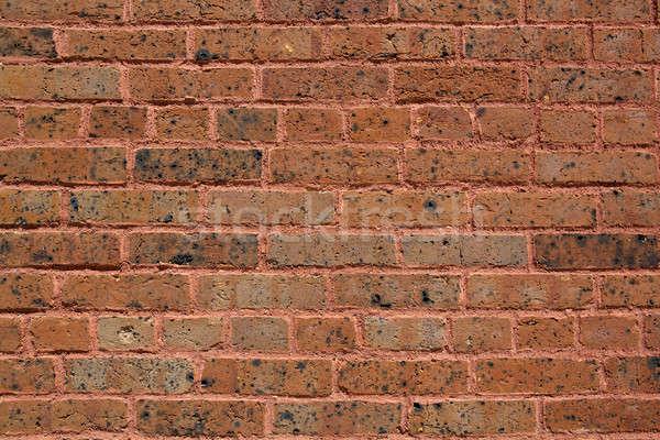Worn Early 19th Century Brick Wall Stock photo © 33ft