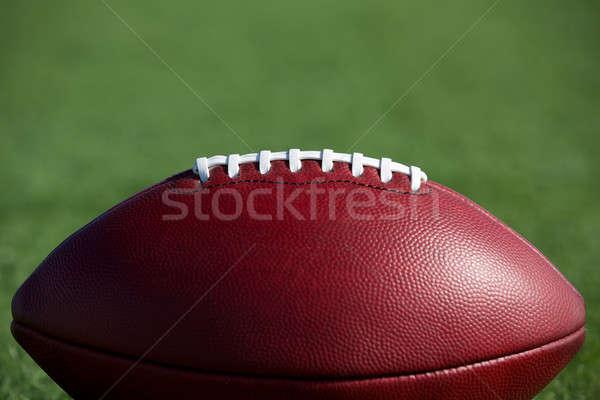 アメリカン サッカー ルーム コピー フットボールの競技場 ストックフォト © 33ft