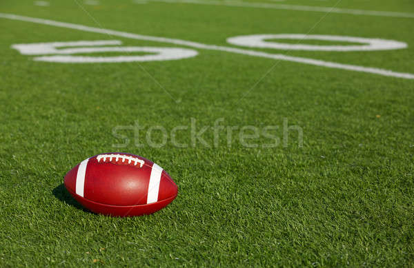 American Football near the Fifty Stock photo © 33ft