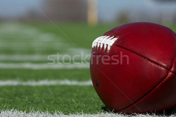 American Football along the hashmarks Stock photo © 33ft