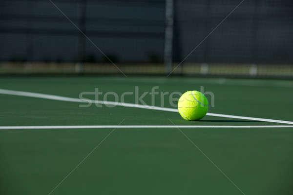 Tennisbal rechter net sport bal Stockfoto © 33ft