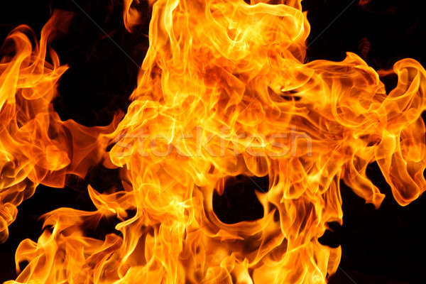 Fire or Flame Detail Stock photo © 33ft