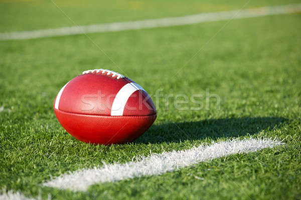 American Football on the Field Stock photo © 33ft
