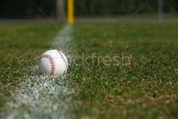 Baseball on the Outfield Chalk Line Stock photo © 33ft
