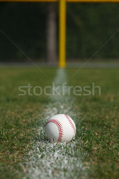Baseball on the Foul Ball Chalk Line Stock photo © 33ft