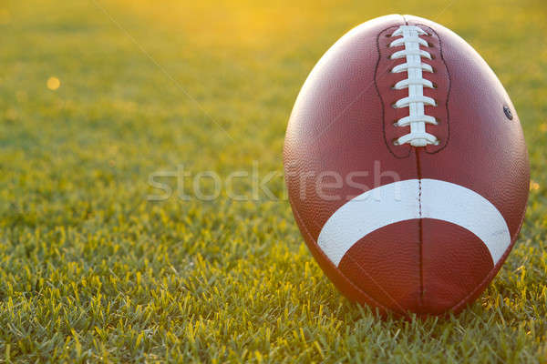 Backlit Collegiate Football Stock photo © 33ft