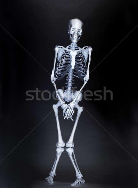 Repülőtér röntgen test scan anatómia utazó Stock fotó © 350jb