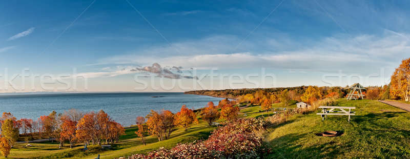Campground in the morning sun Stock photo © 3523studio