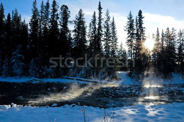 Steaming river in winter Stock photo © 3523studio