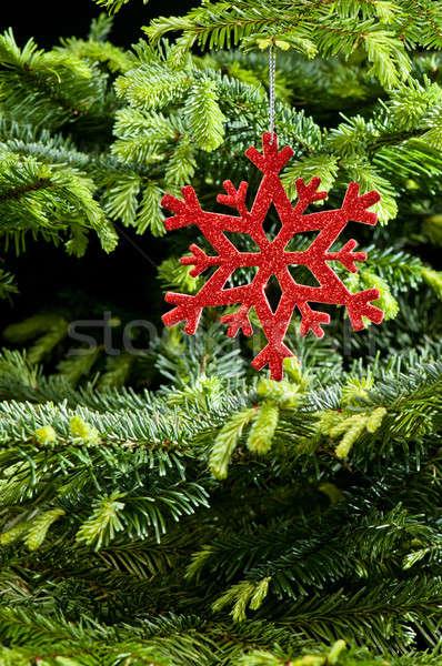Red (artificial) snowflake ornament Stock photo © 3523studio