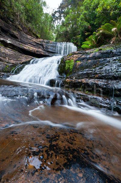 Lady Barron Falls, Mt Field National Park Stock photo © 3523studio