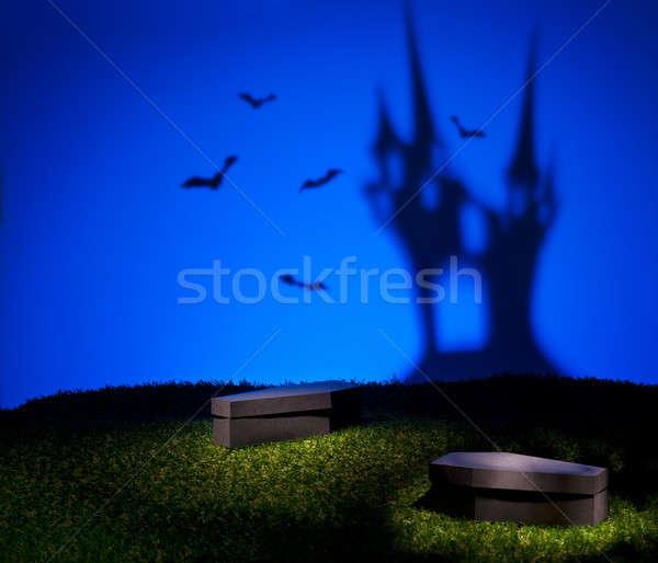 Bats of the scary castle Stock photo © 3523studio