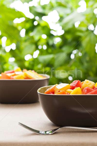 Twee kom gemengd tropische vruchten salade natuur Stockfoto © 3523studio