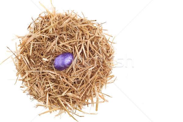 Stroh Nest Schokolade Ostereier weiß Studio Stock foto © 3523studio