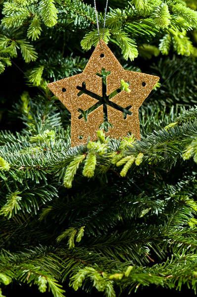 золото приход Рождества орнамент реальный рождественская елка Сток-фото © 3523studio