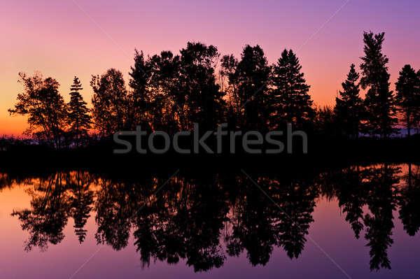 Amazing morning sky  Stock photo © 3523studio