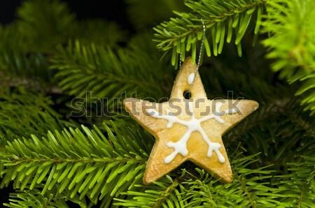 Stok fotoğraf: Star · biçim · kısa · ekmek · kurabiye · noel · ağacı