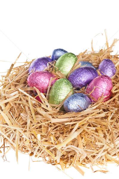 Szalmaszál fészek csokoládé húsvéti tojások fehér stúdió Stock fotó © 3523studio