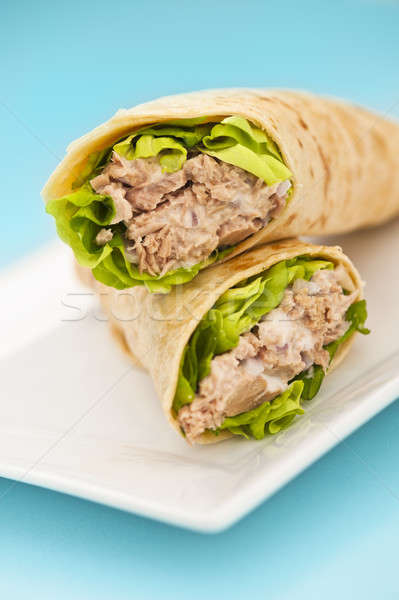 Two tuna melt wrap on a white plate Stock photo © 3523studio