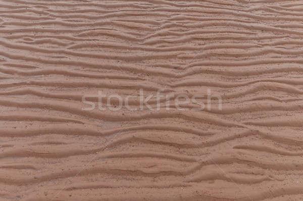 Sabbia fango bella beige colore spiaggia Foto d'archivio © 3523studio