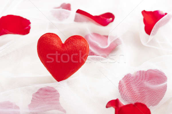 Red heart on wedding veil with rose petals Stock photo © 3523studio