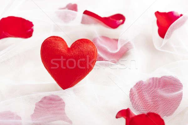 Kırmızı kalp düğün peçe gül yaprakları güzel Stok fotoğraf © 3523studio