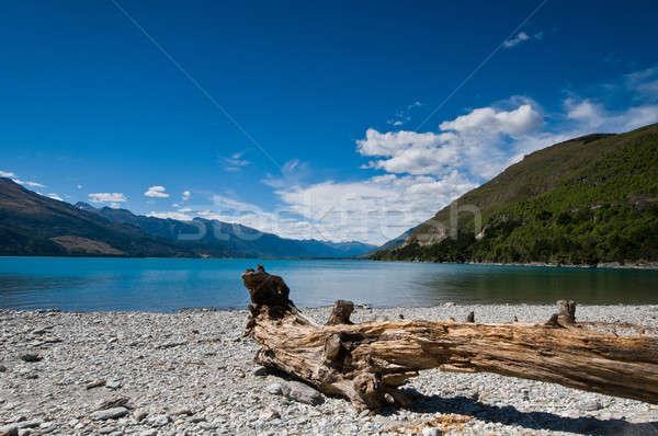 Göl mavi gökyüzü ağaç çim manzara Stok fotoğraf © 3523studio