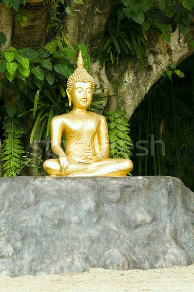 Buddha statue under green tree in meditative posture Stock photo © 3523studio