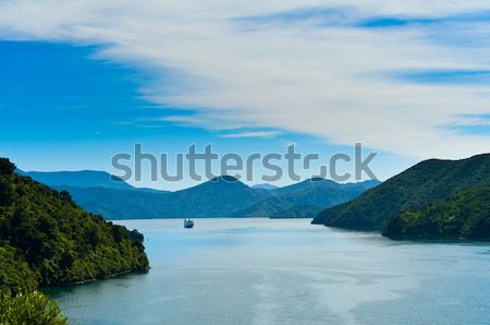 Incoming Ferry through a fjord  Stock photo © 3523studio