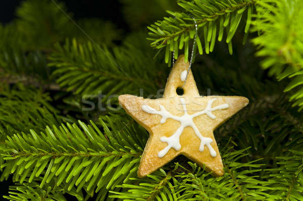 Star vorm kort brood cookie kerstboom Stockfoto © 3523studio