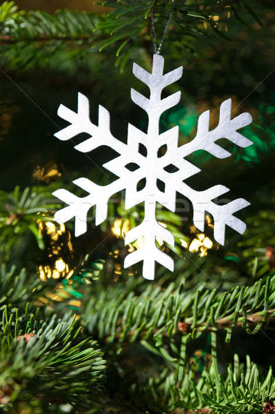 Snow flake shape Christmas  Stock photo © 3523studio