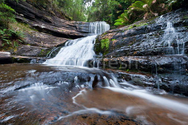 Stock photo: Lady Barron Falls, Mt Field National Park, Tasmania, Australia