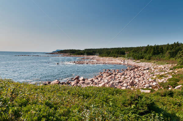 Green Cove, Cape Breton Island Stock photo © 3523studio
