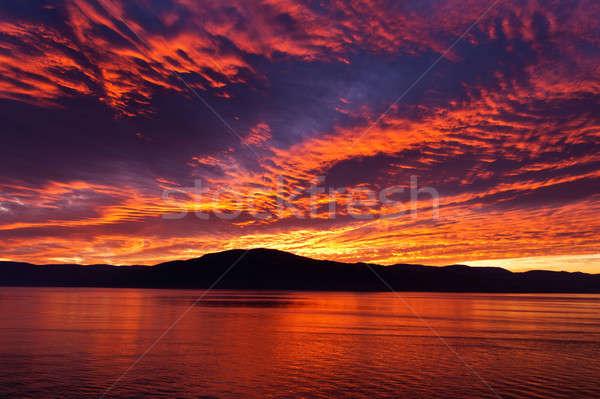 すごい 炎のような 燃焼 空 美しい ストックフォト © 3523studio
