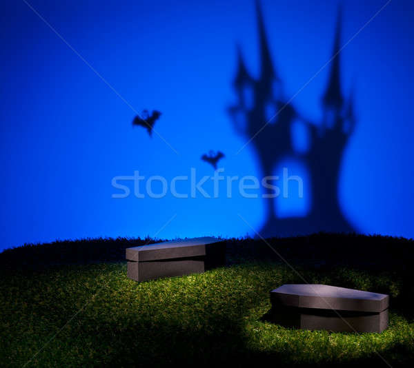 Ghost of the scary castle Stock photo © 3523studio