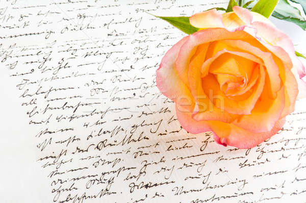 Red yellow rose over a hand written love letter Stock photo © 3523studio
