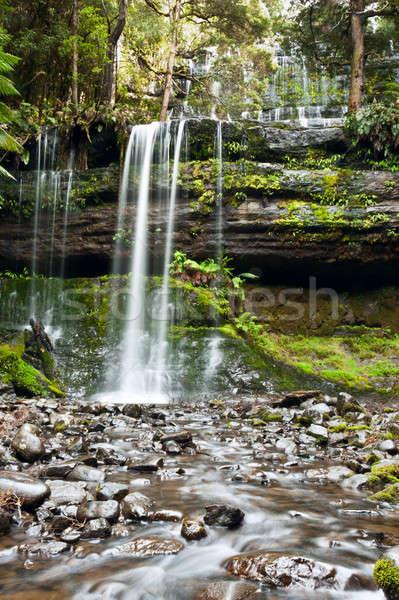 Russell Falls, Mount Field National Park, Central Tasmania  Stock photo © 3523studio