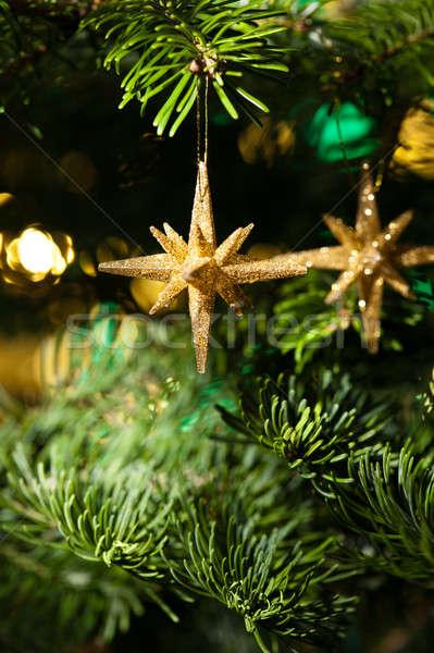 Decorativo ouro estrela ornamento árvore de natal verde Foto stock © 3523studio
