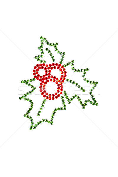 Red green holly made of rhinestones Stock photo © 3523studio