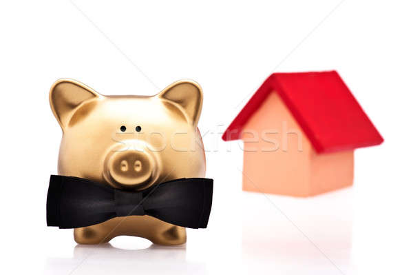 Szerencsés otthon tulajdonos arany disznó fehér Stock fotó © 3523studio