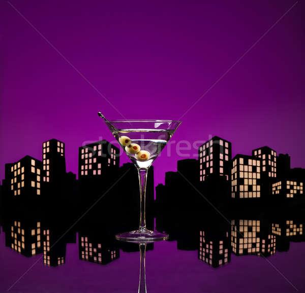 Metropol votka martini kanguru kokteyl votka varyasyon Stok fotoğraf © 3523studio