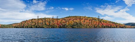 Deciduous forest reflection in an lake  Stock photo © 3523studio