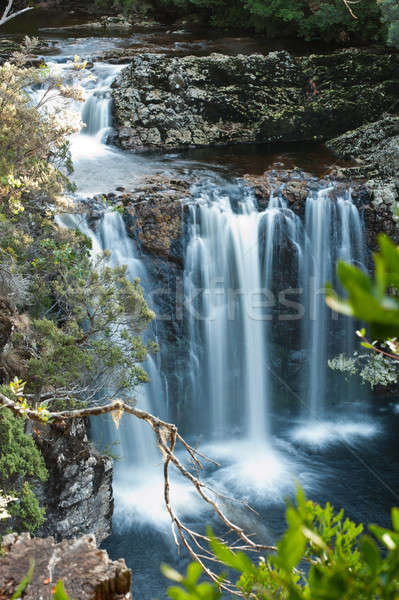 Pencil Pine Falls, Cradle Mountain Stock photo © 3523studio
